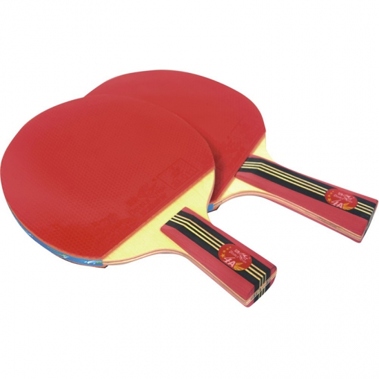 Double Fish Lower Price Ping Pong Racket